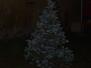 Rozsvícení vánočního stromku, 29.11. 2015